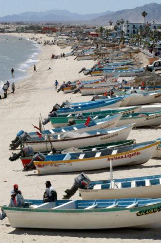 Panga are the boats the fishermen use for shrimp gillnet fishing