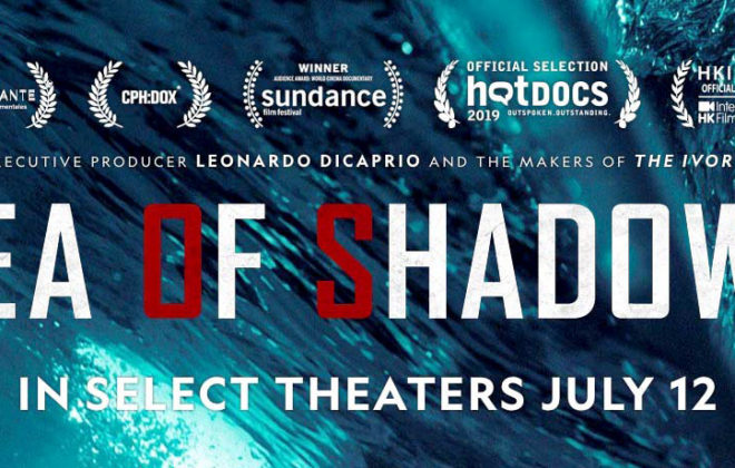 "Sea of Shadows is a National Geographic documentary about environmental activists (Sea Shepherd), the Mexican Navy, and undercover investigators trying to prevent the extinction of the vaquita, a species of porpoise and the smallest whale in the world, by pulling gillnets, doing research, and fighting back Mexican cartels and Chinese mafia who are destroying ocean habitats in their brutal pursuit to harvest the swim bladder of the totoaba fish, known as the ""cocaine of the sea"".[5][6][2][3][7][8] The 1 hour and 44 minutes long film is directed by Richard Ladkani."
