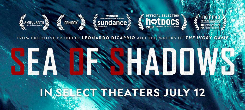 """Sea of Shadowsis aNational Geographic documentaryabout environmental activists (Sea Shepherd), theMexican Navy, and undercover investigators trying to prevent the extinction of thevaquita, a species of porpoise and the smallest whale in the world, by pullinggillnets, doing research, and fighting backMexican cartelsandChinese mafiawho are destroying ocean habitats in their brutal pursuit to harvest the swim bladder of thetotoabafish, known as the """"cocaine of the sea"""".[5][6][2][3][7][8]The 1 hour and 44 minutes long film is directed byRichard Ladkani."""